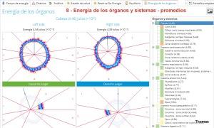 8 - Energía de los órganos y sistemas en promedios detallados