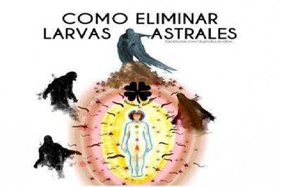 larvas-astrales1-e1445098084762
