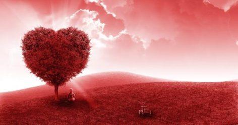 corazon-en-salud-bioenergetica-salud-bioenergetica-ana-maria-oliva-ID160433-620x327